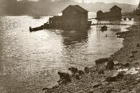 1924 Lavandaie sull'Adige