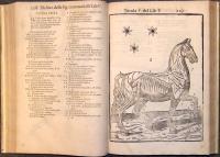 Anatomia del cavallo, infermità et suoi rimedii. Opera nuova, degna di qualsivoglia principe & cavaliere, & molto necessaria a filosofi, medici, cavallerizzi, & marescalchi. Adornata di bellisime figure le quali dimostrano tutta l'anatomia di esso cavallo.  Divisa in due volumi.