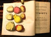 Pomologie ou description des meilleures sortes de pommes et de poires (con:) Fructologie ou description des arbres fruitiers...