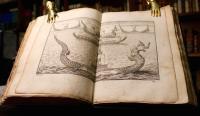 Voyage de Siam, des pères jésuites, envoyez par le Roy aux Indes & à la Chine. Avec leurs observations astronomiques, et leurs remarques de physique, de géographie, d'hydrographie, & d'histoire.