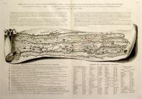Fragment de la carte théodosienne, publiée à Venise en 1591 par Marc Velser, & connue sous le nom de Carte de Peutinger...