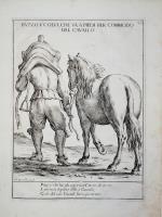 Pazzo è colui che va a piedi per commodo del cavallo.